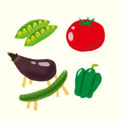 夏野菜4種
